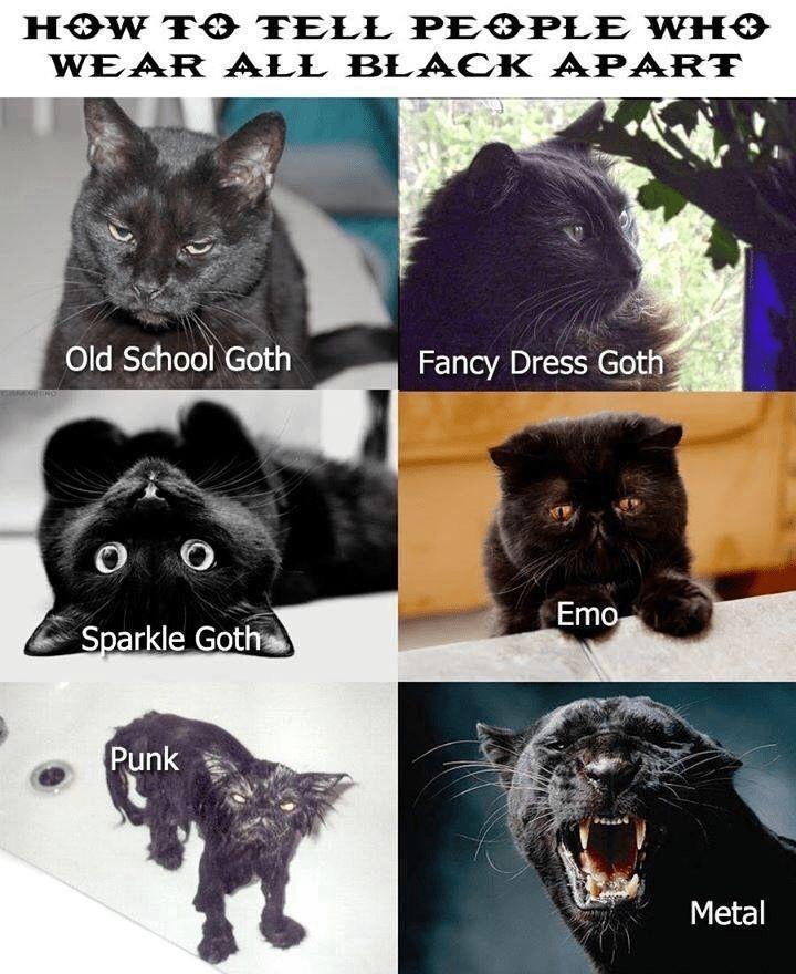 Photograph - HOW TO TELL PEOPLE WHO WEAR ALL BLA CK APART Old School Goth Fancy Dress Goth O O Emo Sparkle Goth Punk Metal