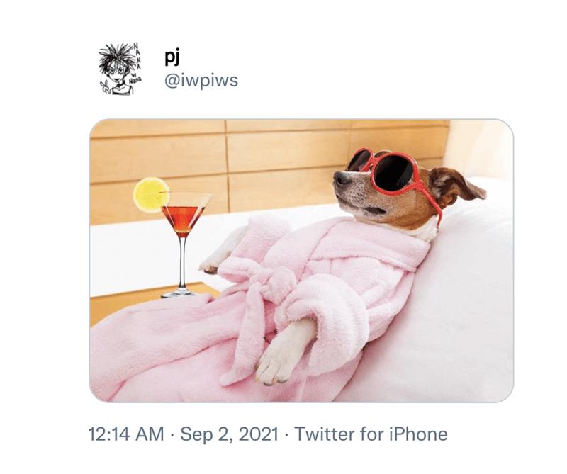 Comfort - pj @iwpiws 12:14 AM · Sep 2, 2021 · Twitter for iPhone