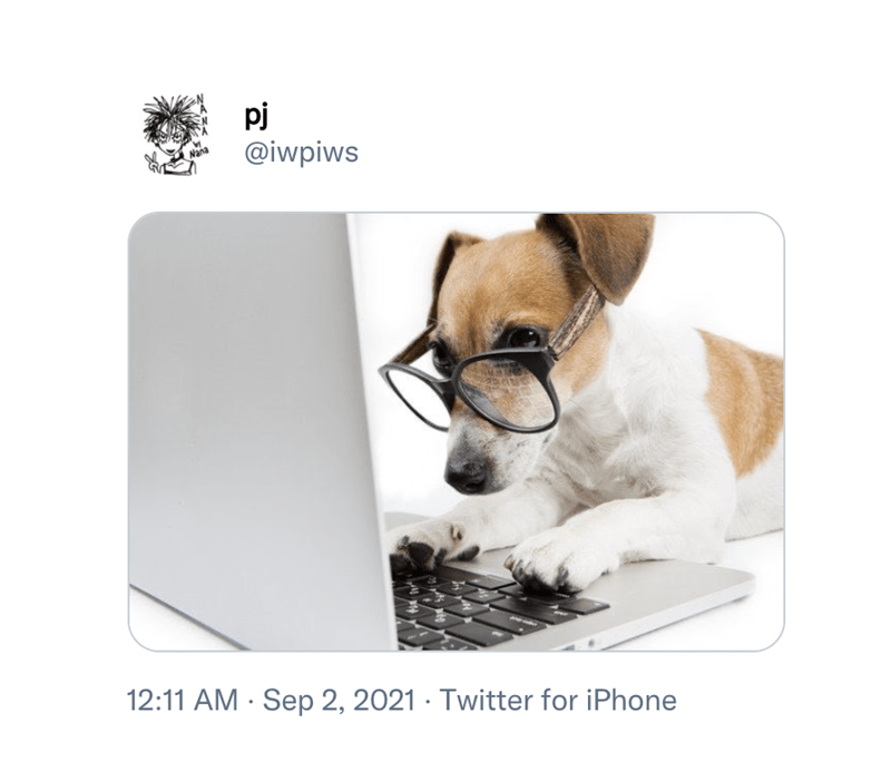 Tableware - pj @iwpiws 12:11 AM · Sep 2, 2021 · Twitter for iPhone