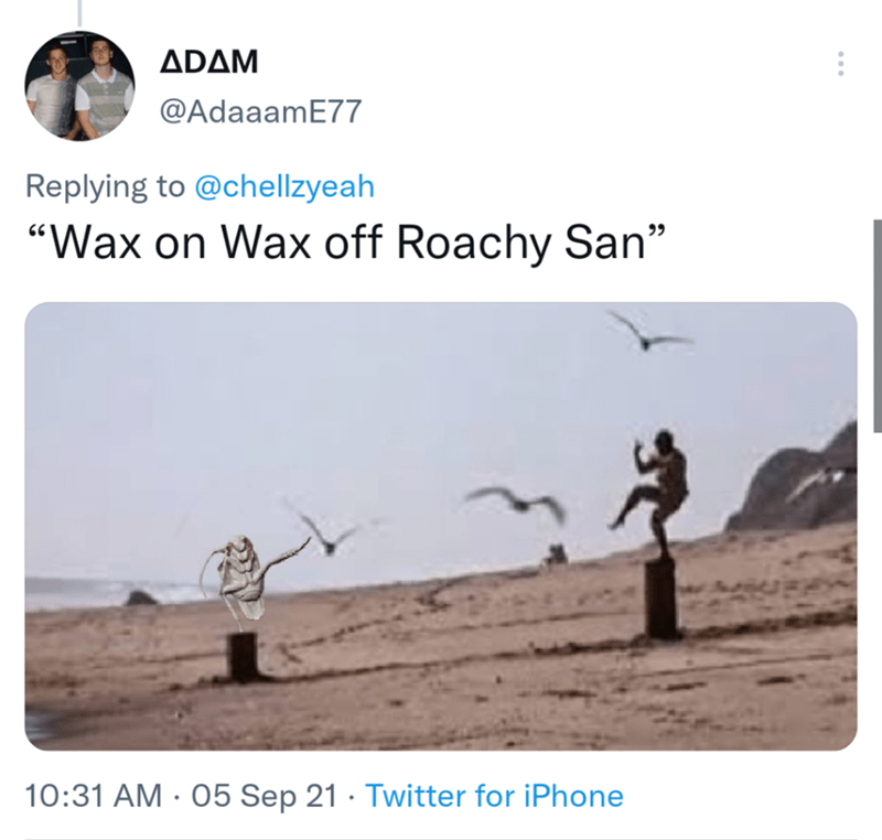 """Sky - ADAM @AdaaamE77 Replying to @chellzyeah """"Wax on Wax off Roachy San"""" 10:31 AM · 05 Sep 21 · Twitter for iPhone"""