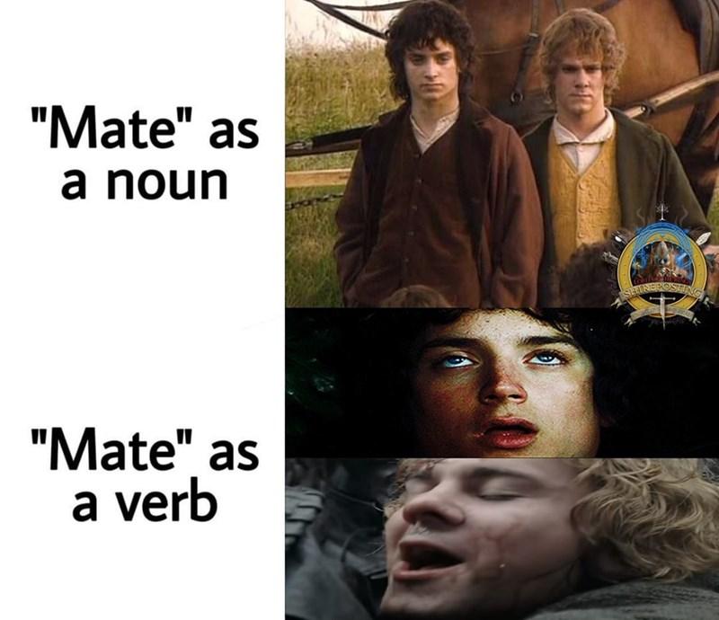 """Face - """"Mate"""" as a noun """"Mate"""" as a verb"""