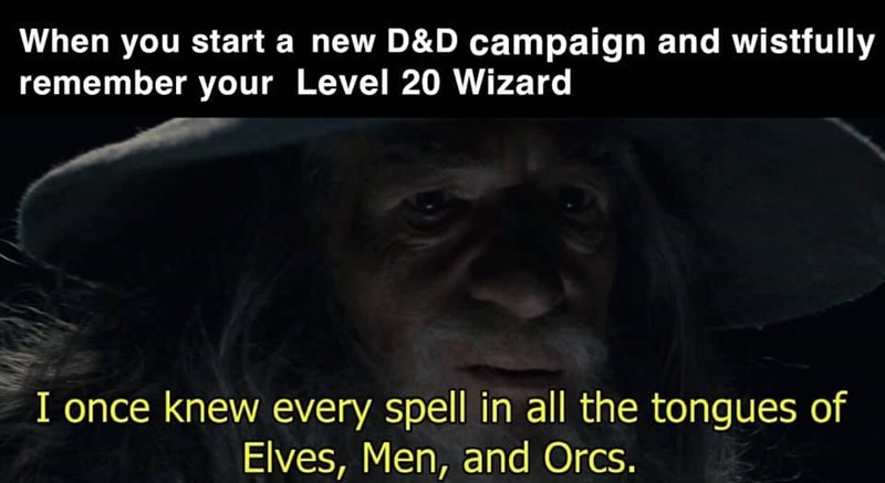 Primate - When you start a new D&D campaign and wistfully remember your Level 20 Wizard I once knew every spell in all the tongues of Elves, Men, and Orcs.