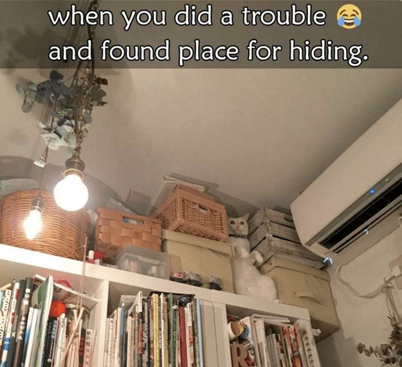Property - when you did a trouble and found place for hiding.