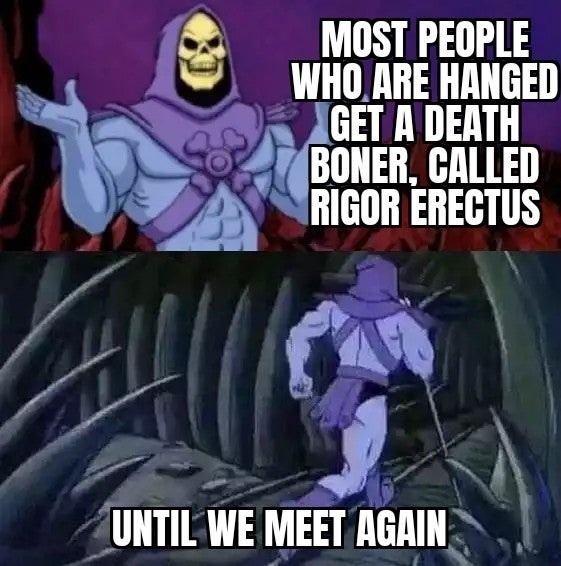 Cartoon - MOST PEOPLE WHO ARE HANGED GET A DEATH BONER, CALLED RIGOR ERECTUS UNTIL WE MEET AGAIN