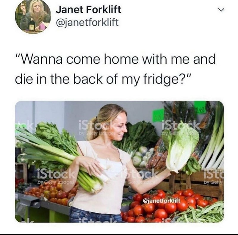 """Food - Janet Forklift @janetforklift """"Wanna come home with me and die in the back of my fridge?"""" 142 ck. istock iStok by Gelty Imgdes by Gelty istock iStock isto by Gelty Images by Getty @janetforklift >"""