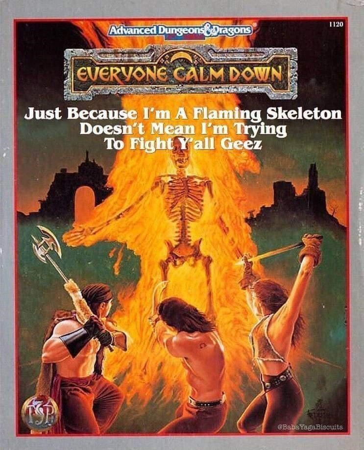 Book - 1120 Advanced DungeonsDragons EVERYONE CALM DOWN Just Because I'm A Flaming Skeleton Doesn't Mean I'm Trying To Fight Yall Geez @Baba YagaBiscuits