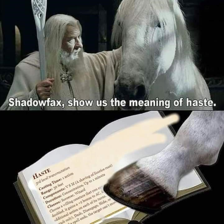 Hand - Shadowfax, show us the meaning of haste. HASTE 3rd level transmutation Casting Time: 1 action Range: 30 feet Components: VSM (A shaving of licorice root) Duration: Concentration, Up to 1 minute Classes: Sorcerer, Wizard Choose a willing creature that you en doubled, it gains a +2 bonus to AC, it additional action on each of its turns. pck only), Dash, Disengage, Hide, or spell ends, the target can't mo