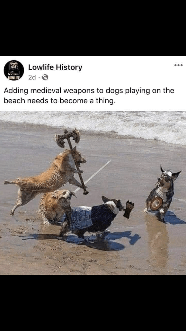 Working animal - Lowlife History ... 2d · O OWUFE Adding medieval weapons to dogs playing on the beach needs to become a thing.