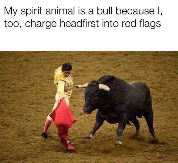 Matador - My spirit animal is a bull because I, too, charge headfirst into red flags