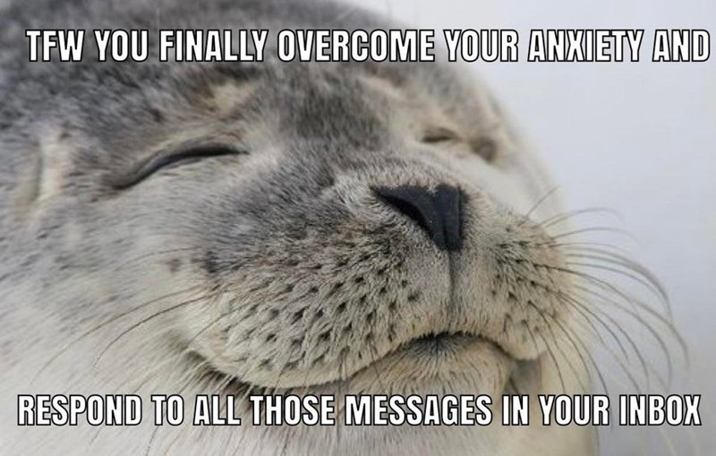 Cat - TFW YOU FINALLY OVERCOME YOUR ANXIETY AND RESPOND TO ALL THOSE MESSAGES IN YOUR INBOX
