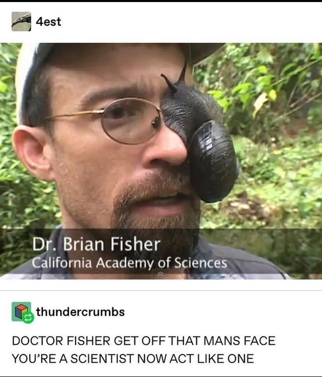 Forehead - A 4est Dr. Brian Fisher California Academy of Sciences thundercrumbs DOCTOR FISHER GET OFF THAT MANS FACE YOU'RE A SCIENTIST NOW ACT LIKE ONE