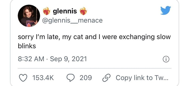 Font - O glennis @glennis_menace sorry l'm late, my cat and I were exchanging slow blinks 8:32 AM · Sep 9, 2021 153.4K 209 O Copy link to Tw...
