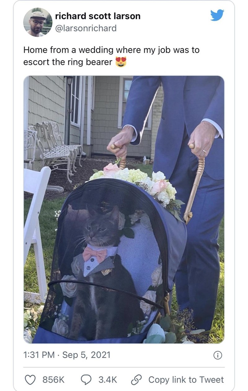 Product - richard scott larson @larsonrichard Home from a wedding where my job was to escort the ring bearer 1:31 PM · Sep 5, 2021 856K 9 3.4K O Copy link to Tweet
