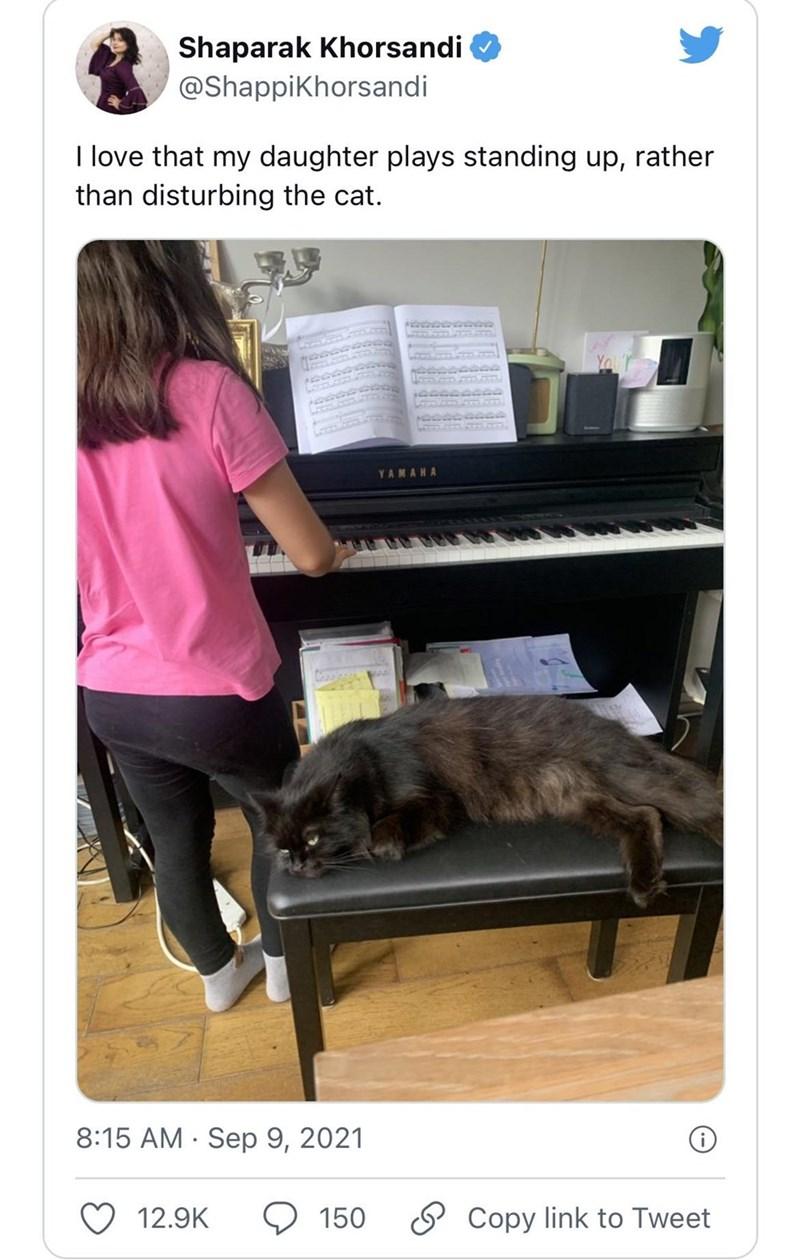 Musical instrument - Shaparak Khorsandi @Shappikhorsandi I love that my daughter plays standing up, rather than disturbing the cat. Yor YAMAHA 8:15 AM · Sep 9, 2021 12.9K 9 150 O Copy link to Tweet