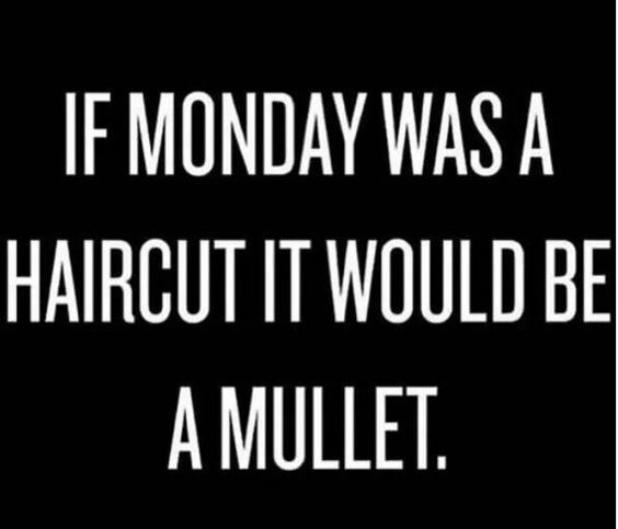 Mammal - IF MONDAY WAS A HAIRCUT IT WOULD BE A MULLET.