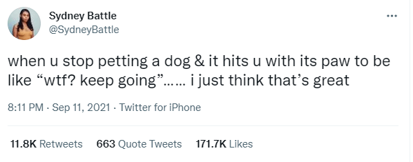 """Font - Sydney Battle @SydneyBattle when u stop petting a dog & it hits u with its paw to be like """"wtf? keep going"""". i just think that's great ...... 8:11 PM - Sep 11, 2021 · Twitter for iPhone 11.8K Retweets 663 Quote Tweets 171.7K Likes"""