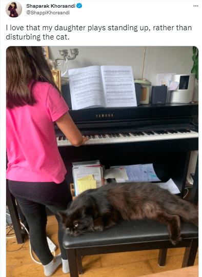 Musical instrument - Shaparak Khorsandi @Shappikhorsandi I love that my daughter plays standing up, rather than disturbing the cat. TAHARA