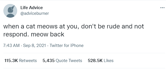 Font - Life Advice ... @adviceburner when a cat meows at you, don't be rude and not respond. meow back 7:43 AM - Sep 8, 2021 - Twitter for iPhone 115.3K Retweets 5,435 Quote Tweets 528.5K Likes
