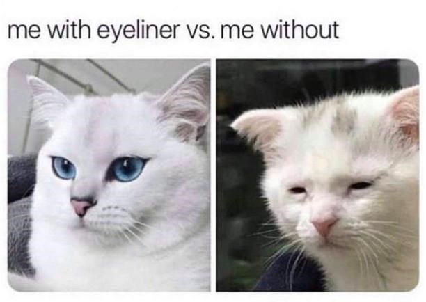 Cat - me with eyeliner vs. me without