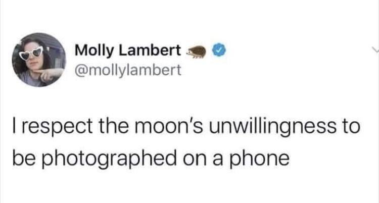 Skin - Molly Lambert @mollylambert I respect the moon's unwillingness to be photographed on a phone