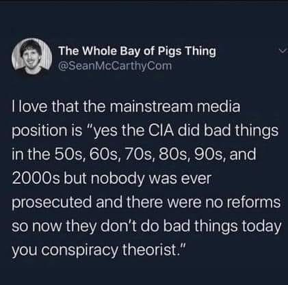 """Terrestrial plant - The Whole Bay of Pigs Thing @SeanMcCarthyCom I love that the mainstream media position is """"yes the CIA did bad things in the 50s, 60s, 70s, 80s, 90s, and 2000s but nobody was ever prosecuted and there were no reforms so now they don't do bad things today you conspiracy theorist."""""""