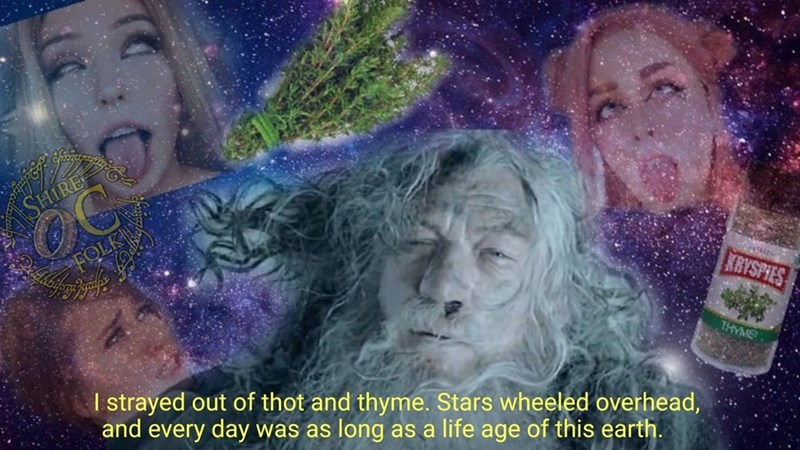 Organism - SHIRE FOLK KRYSPIES THYME I strayed out of thot and thyme. Stars wheeled overhead, and every day was as long as a life age of this earth.