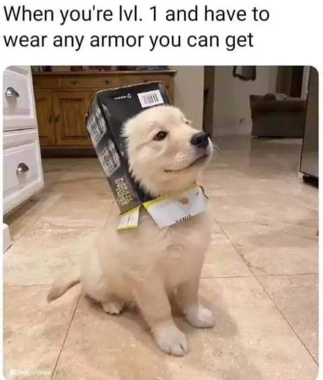Dog - When you're Ivl. 1 and have to wear any armor you can get Fal