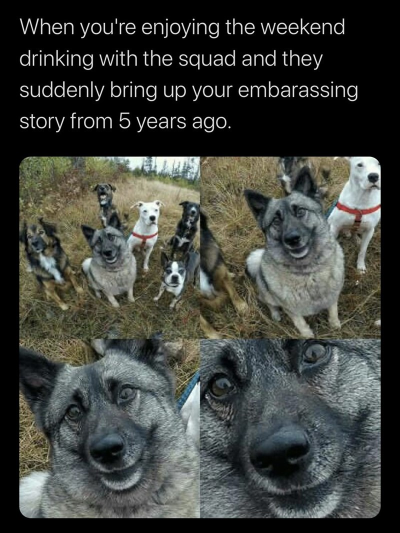 Photograph - When you're enjoying the weekend drinking with the squad and they suddenly bring up your embarassing story from 5 years ago.