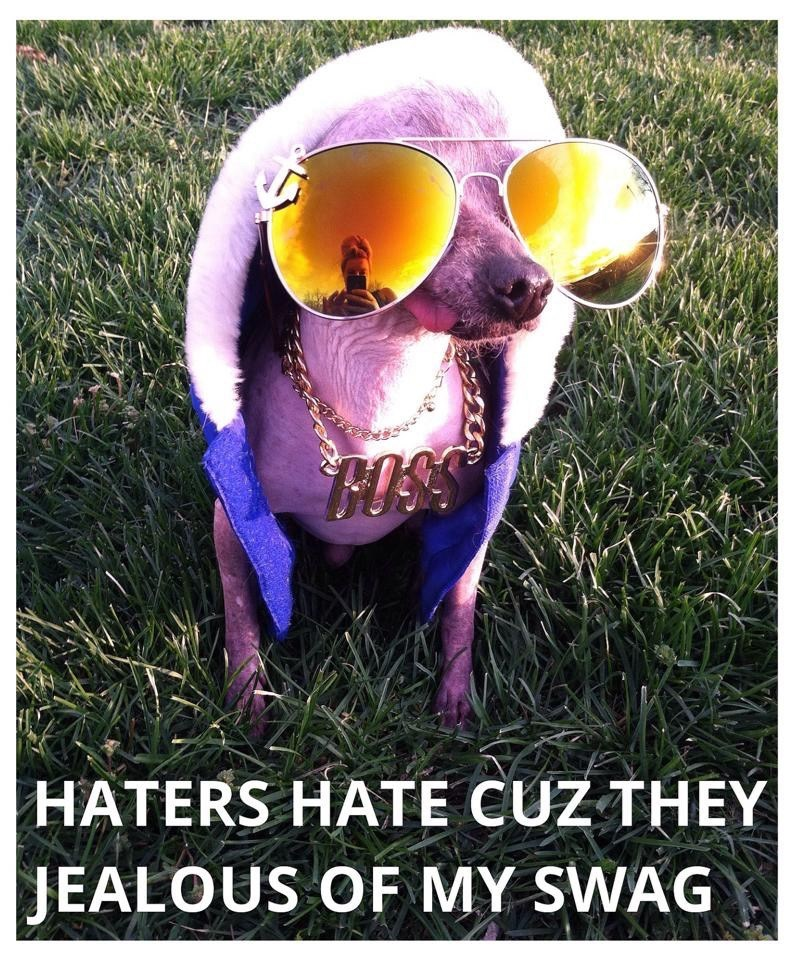Photograph - HATERS HATE CUZ THEY JEALOUS OF MY SWAG