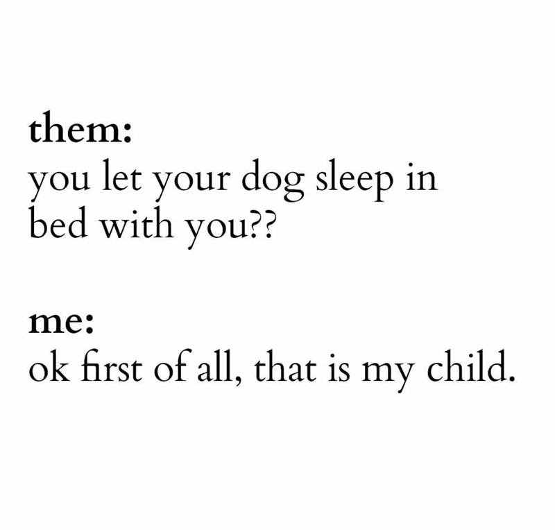 Font - them: you let your dog sleep in bed with you?? me: ok first of all, that is my child.