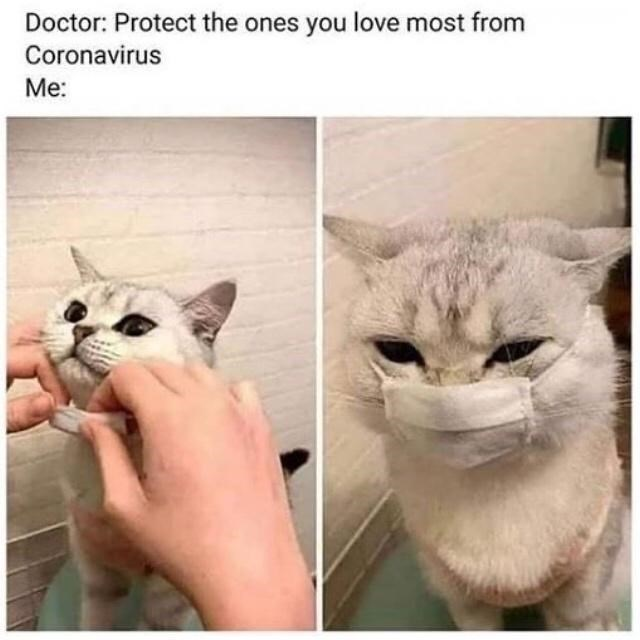 Nose - Doctor: Protect the ones you love most from Coronavirus Me: