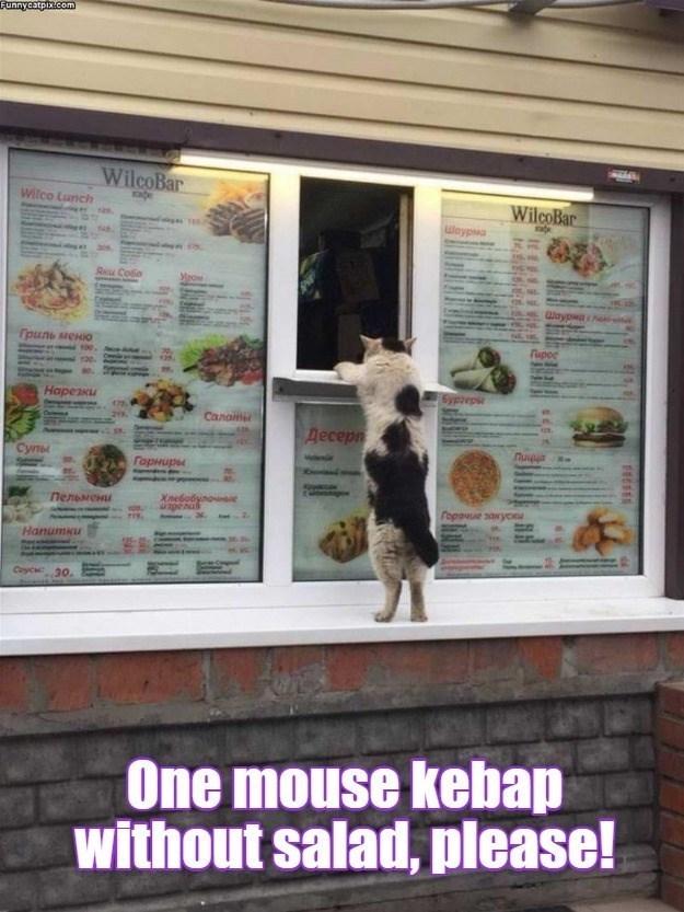 Carnivore - Funnycatpix.com AR4 WilcoBar Wilco Lunch WilcoBar Waypwa Axu Cosa WaypM Tpuns MEHO rupoc 6ypzep Нарезки 175 Canamer Десерп Супы Горниры Пельмени Xnebobynoe Fopauue saxycKu Hanumku Coycu 30. One mouse kebap without salad, please!