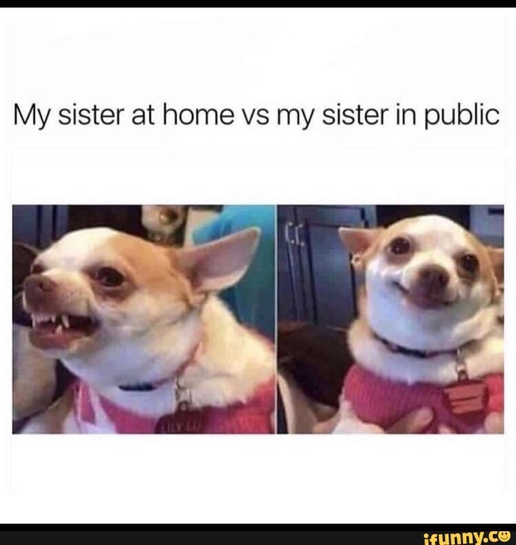 Dog - My sister at home vs my sister in public ifunny.co