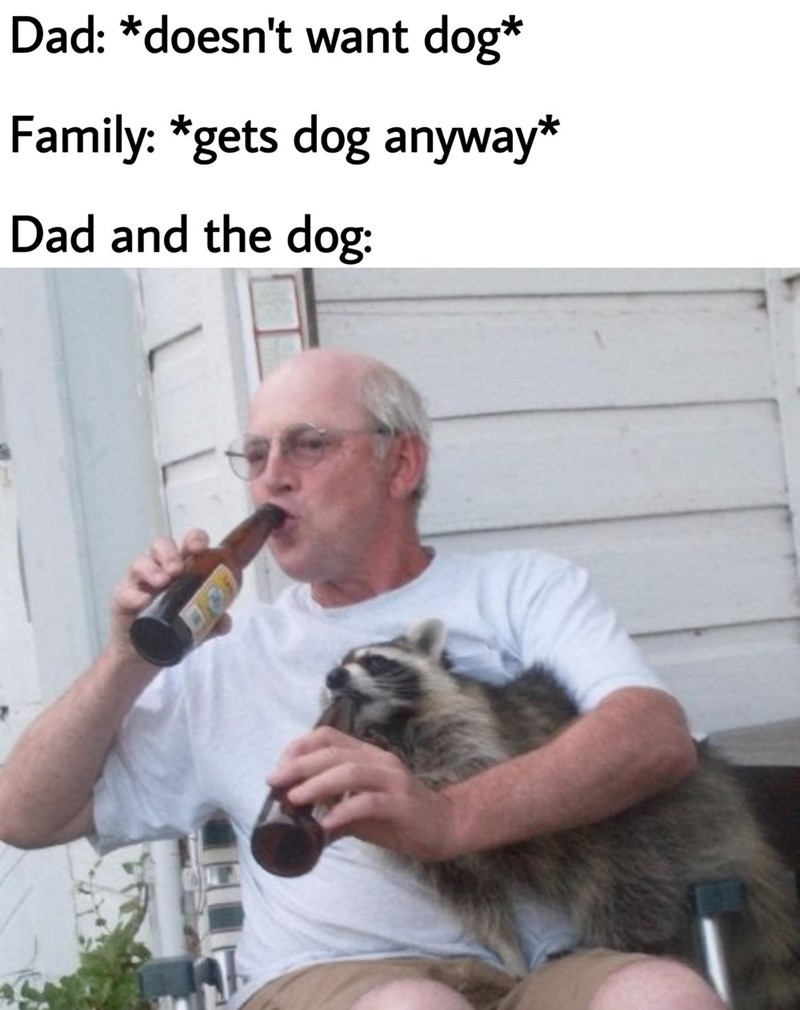 Hand - Dad: *doesn't want dog* Family: *gets dog anyway* Dad and the dog: