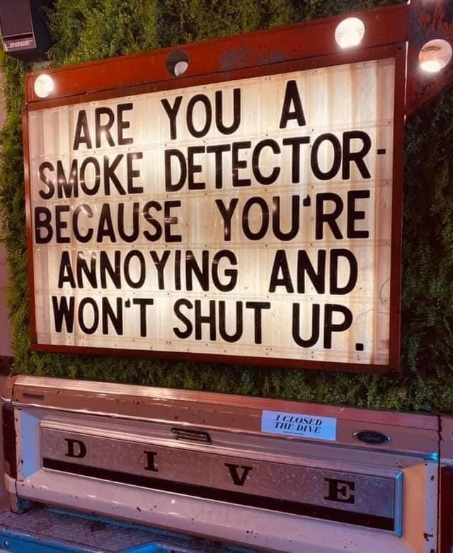 Wood - BOSE ARE YOU A SMOKE DETECTOR BECAUSE YOU'RE ANNOYING AND WON'T SHUT UP. I CLOSED THE DIVE D I V