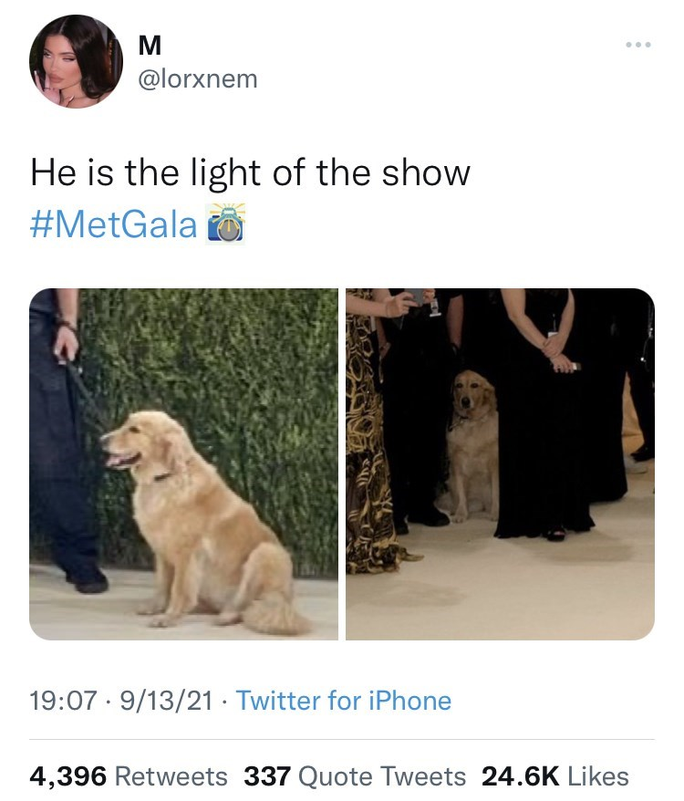 Dog - M @lorxnem He is the light of the show #MetGala o 19:07 · 9/13/21 · Twitter for iPhone 4,396 Retweets 337 Quote Tweets 24.6K Likes