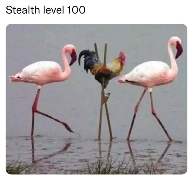 Water - Stealth level 100