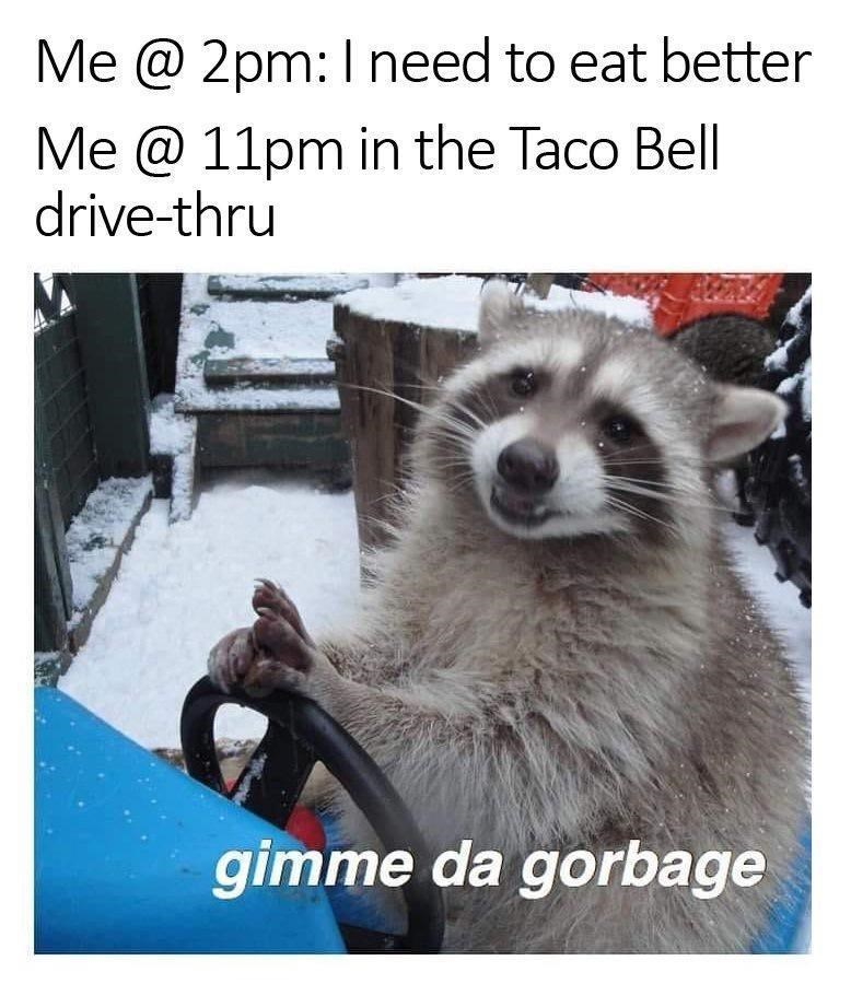 Carnivore - Me @ 2pm:I need to eat better Me @ 11pm in the Taco Bell drive-thru gimme da gorbage