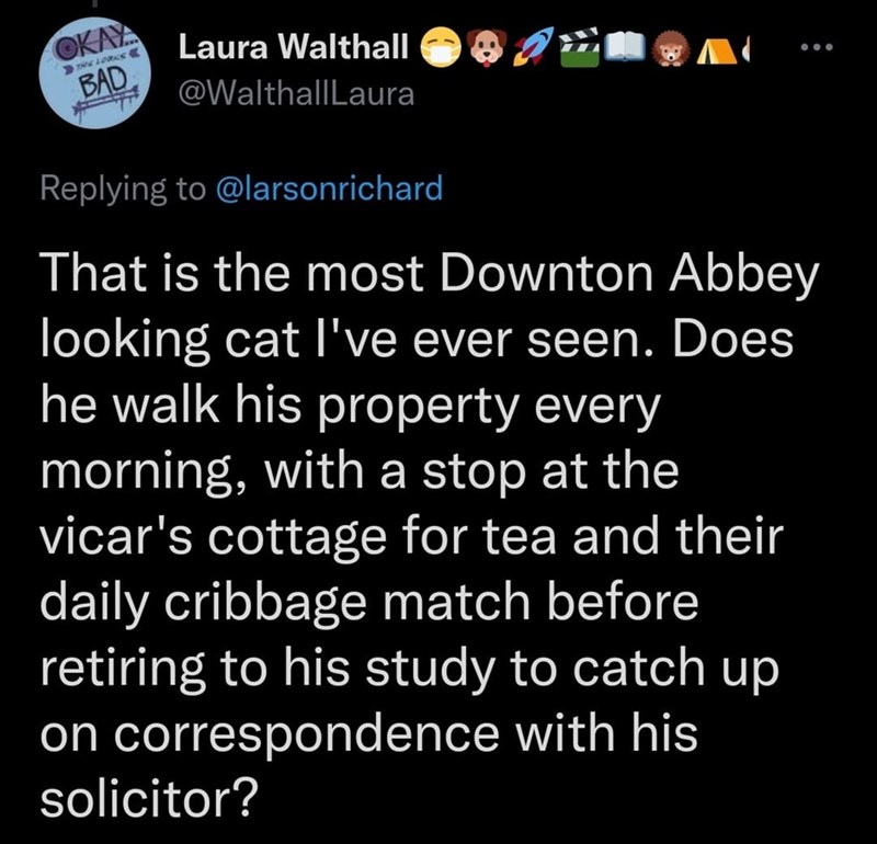 Font - OKAYA BAD Laura Walthall @WalthallLaura Replying to @larsonrichard That is the most Downton Abbey looking catI've ever seen. Does he walk his property every morning, with a stop at the vicar's cottage for tea and their daily cribbage match before retiring to his study to catch up on correspondence with his solicitor?