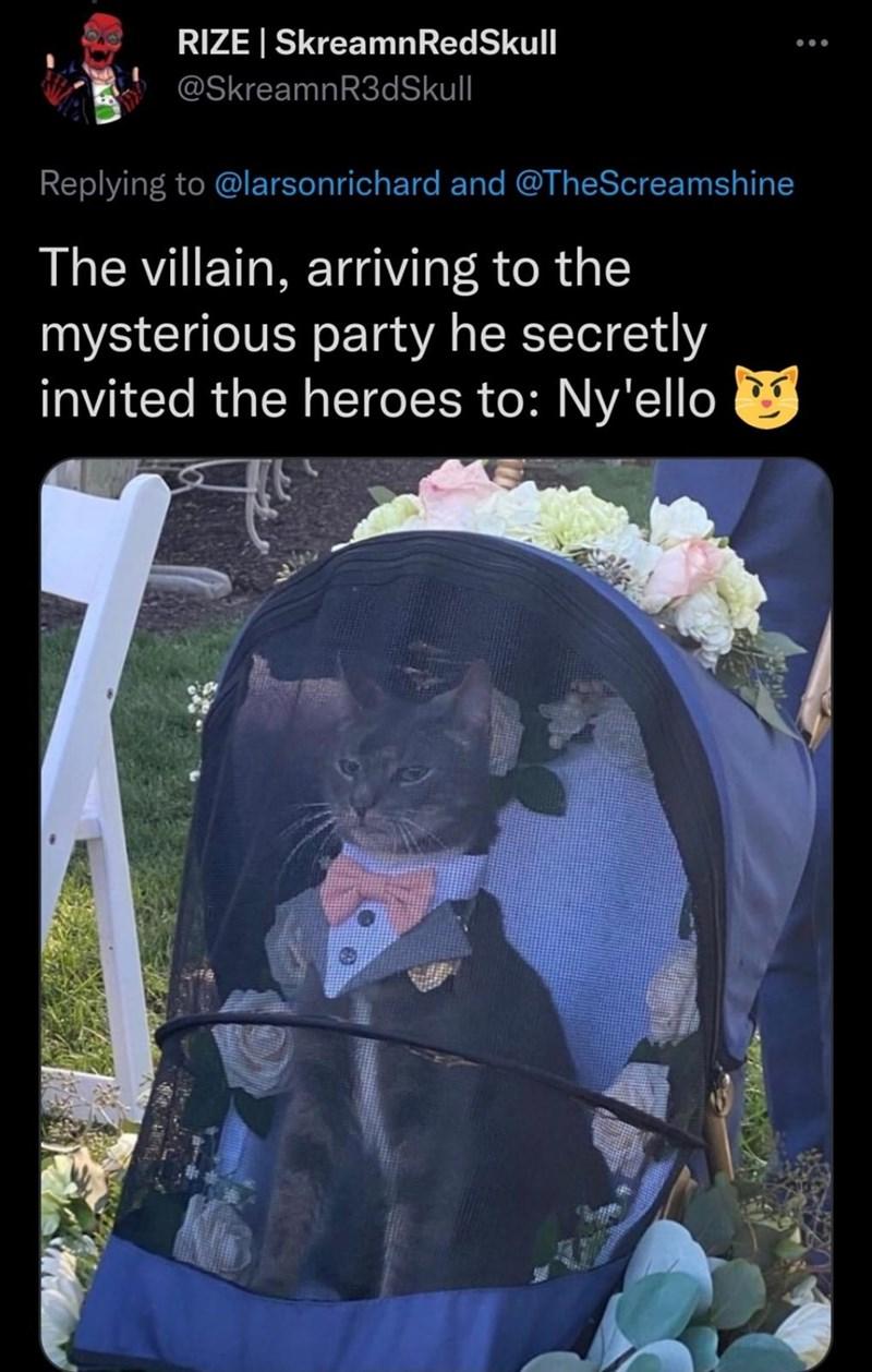 Vertebrate - RIZE   SkreamnRedSkull @SkreamnR3dSkull Replying to @larsonrichard and @TheScreamshine The villain, arriving to the mysterious party he secretly invited the heroes to: Ny'ello