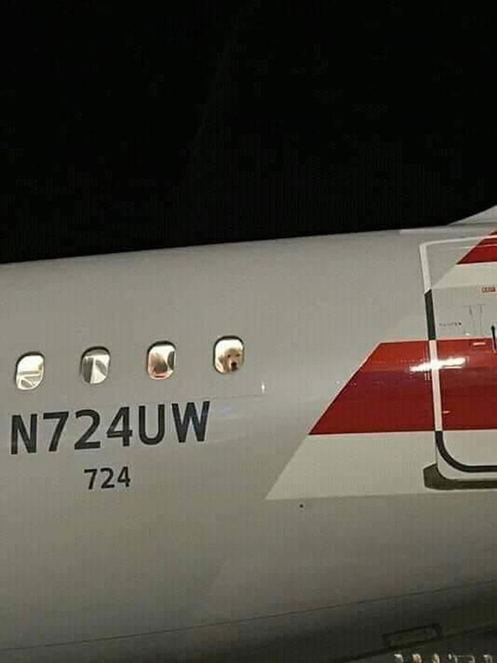 Vehicle - N724UW 724