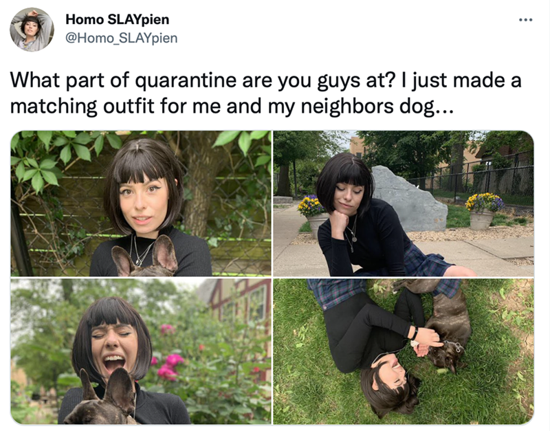 Clothing - Homo SLAYpien @Homo_SLAYpien ... What part of quarantine are you guys at? I just made a matching outfit for me and my neighbors dog...
