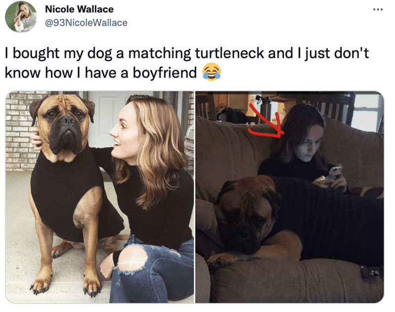 Dog - Nicole Wallace @93NicoleWallace I bought my dog a matching turtleneck and I just don't know how I have a boyfriend