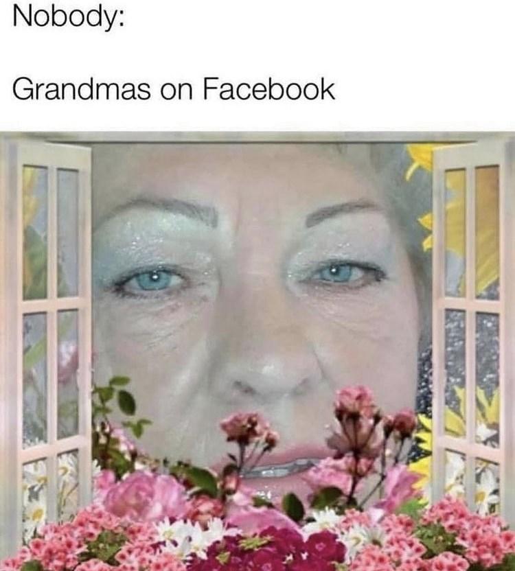 Flower - Nobody: Grandmas on Facebook