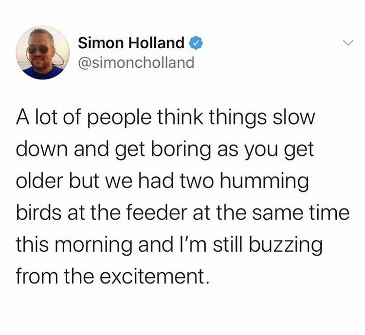 Font - Simon Holland @simoncholland A lot of people think things slow down and get boring as you get older but we had two humming birds at the feeder at the same time this morning and l'm still buzzing from the excitement.