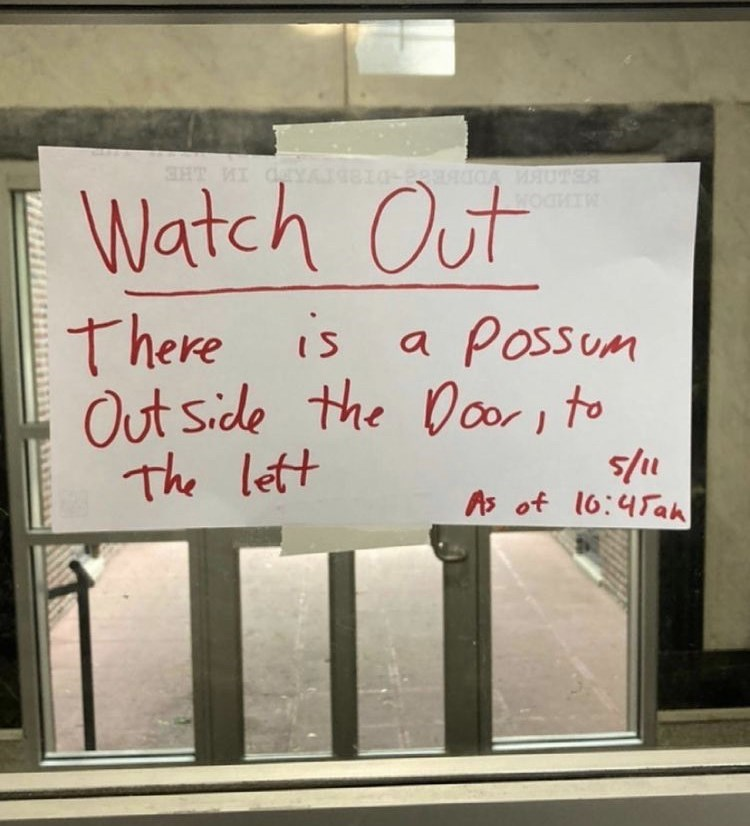 Handwriting - SHT WI CY MAUTER Watch Out is a Possum Out side the Door, to The lett 5/1 As of 16:45ah
