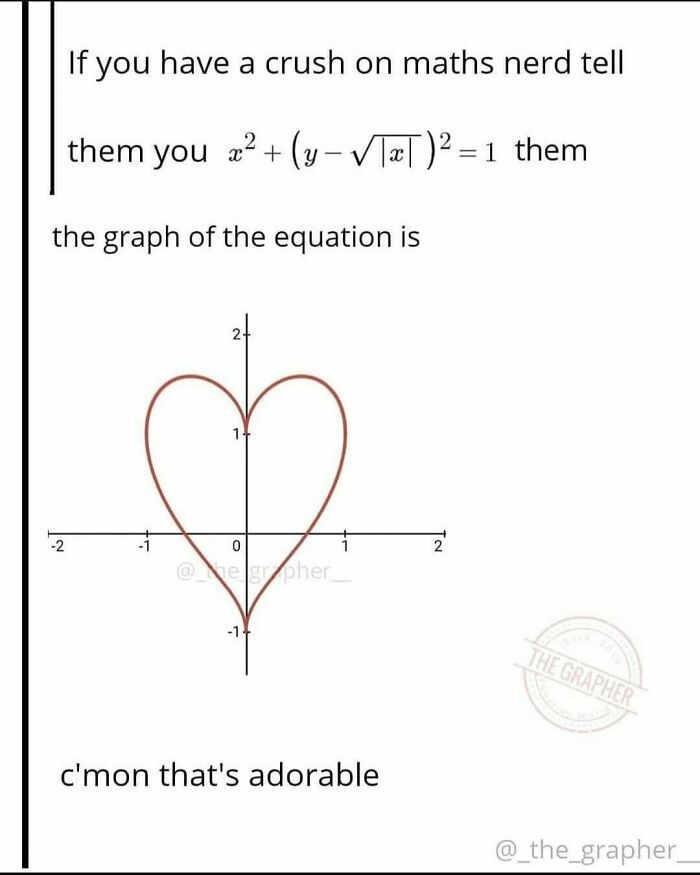 Human body - If you have a crush on maths nerd tell them you a2 + (y- VTæT)² = 1 them the graph of the equation is 2 -2 @he gropher -14 THE GRAPHER c'mon that's adorable @_the_grapher