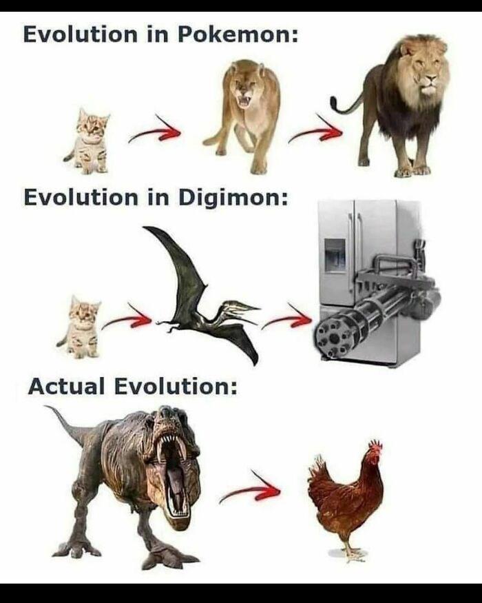 Bird - Evolution in Pokemon: Evolution in Digimon: Actual Evolution: