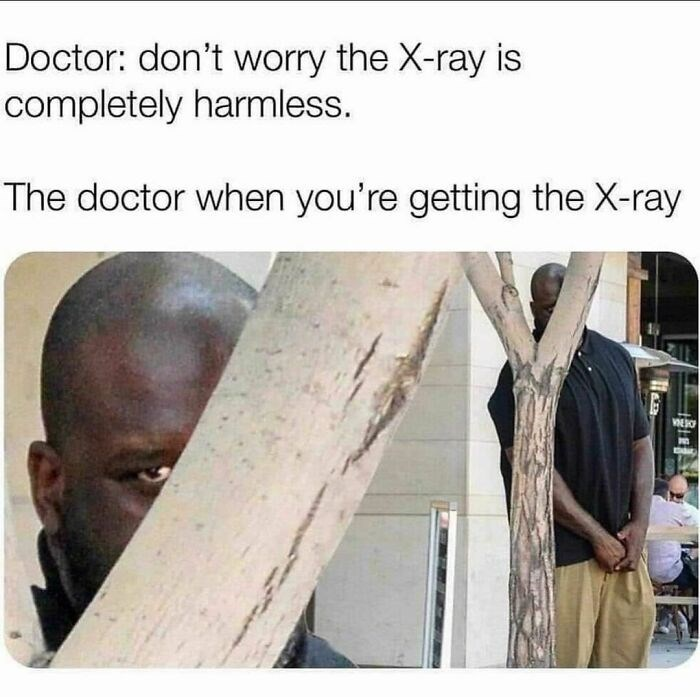 Vertebrate - Doctor: don't worry the X-ray is completely harmless. The doctor when you're getting the X-ray