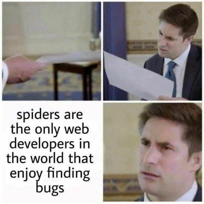 Forehead - spiders are the only web developers in the world that enjoy finding bugs